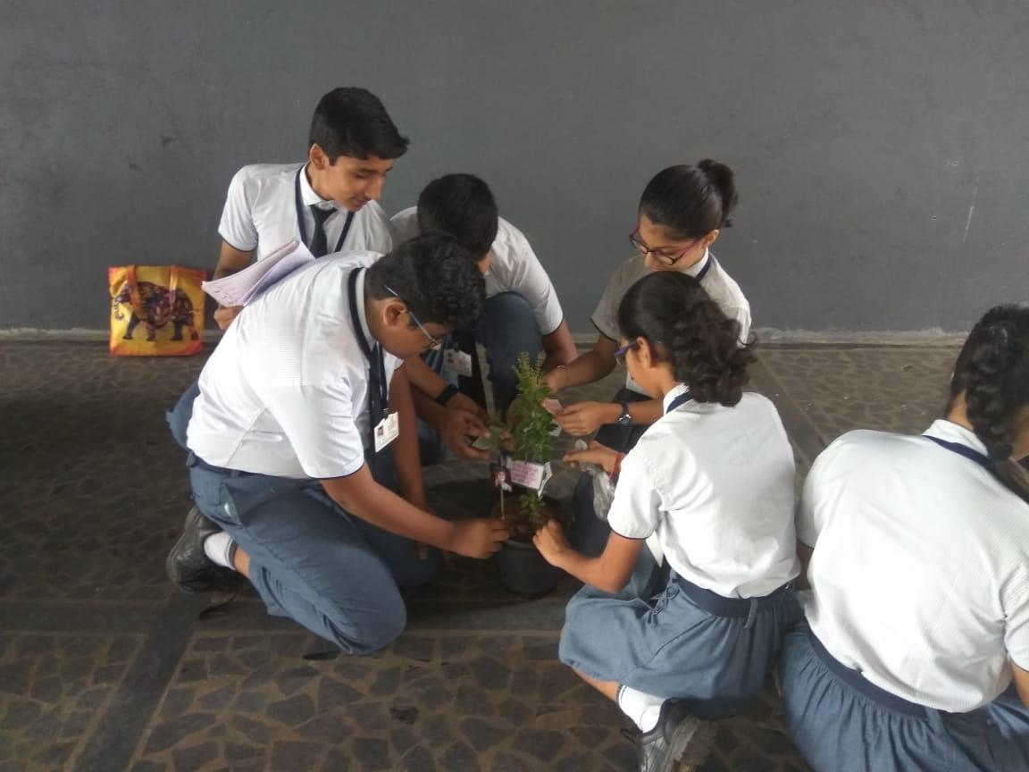 Kabir Jayanti (9)