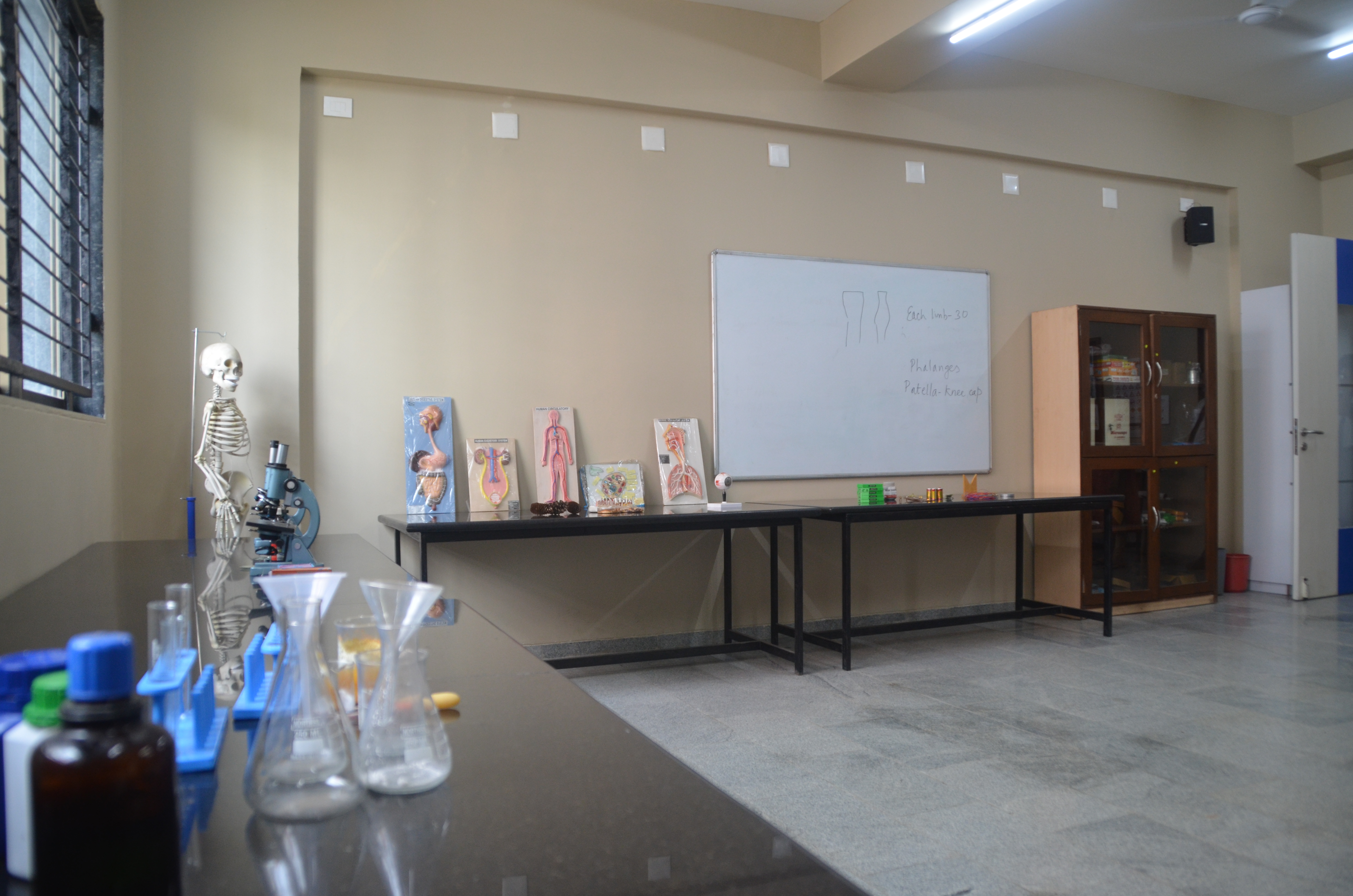 Math-Science Lab (3)